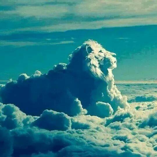 leo clouds